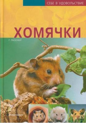 Хомячки = Hamster