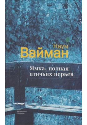 Ямка, полная птичьих перьев (письма Миши Файнермана) : Роман