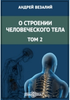 О строении человеческого тела. Т. 2