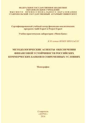 Методологические аспекты обеспечения финансовой устойчивости российских коммерческих банков в современных условиях: монография