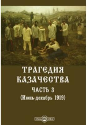 Трагедия казачества. (Июнь-декабрь 1919), Ч. 3