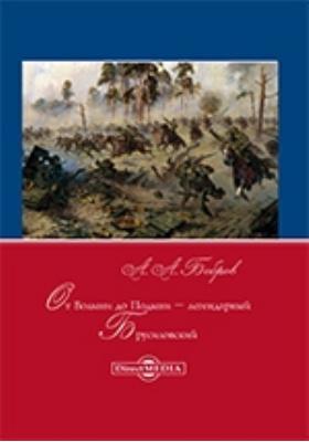 От Волыни до Подыни – легендарный Брусиловский: научно-популярное издание