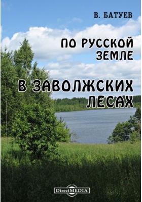 По Русской земле. В Заволжских лесах