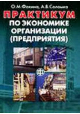 Практикум по экономике организации (предприятия): учебное пособие