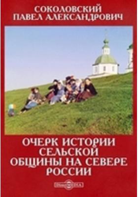 Очерк истории сельской общины на севере России: монография