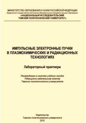 Импульсные электронные пучки в плазмохимических и радиационных технологиях. Лабораторный практикум: учебное пособие