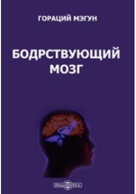 Бодрствующий мозг