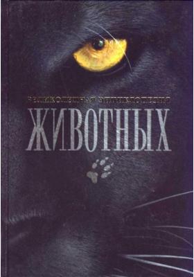 Великолепная энциклопедия животных = Animals of the World : 6-е издание, обновленное