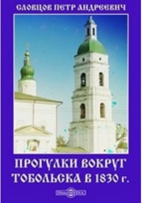 Прогулки вокруг Тобольска в 1830 г.: документально-художественная литература