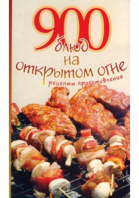 900 блюд на открытом огне. Рецепты приготовления