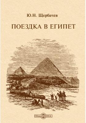 Поездка в Египет: документально-художественная литература