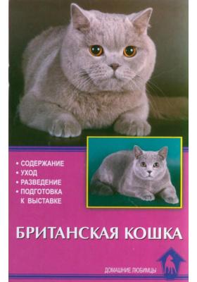 Британская кошка : Содержание. Уход. Разведение. Подготовка к выставке