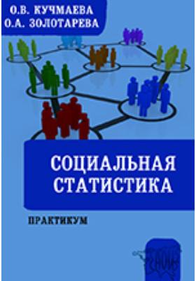 Социальная статистика: практикум