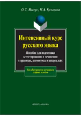 Интенсивный курс русского языка : учебное пособие для подготовки к тестированию и сочинению в правилах, алгоритмах и шпаргалках