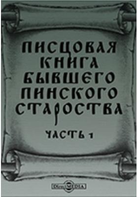 Писцовая книга бывшего Пинского староства, Ч. 1
