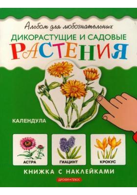 Дикорастущие и садовые растения : Книжка с наклейками