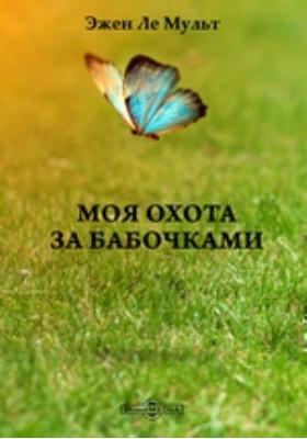 Моя охота за бабочками