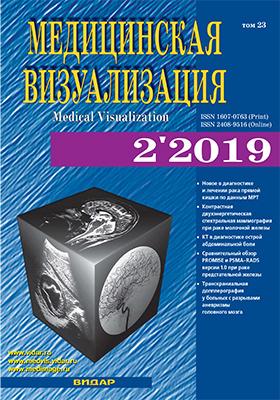 Медицинская визуализация: журнал. 2019. № 2