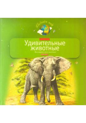 Удивительные животные : Моя первая книга о животных