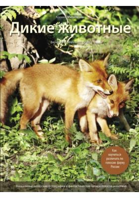 Дикие животные : Иллюстрированная энциклопедия обитателей средней полосы России