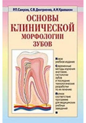 Основы клинической морфологии зубов