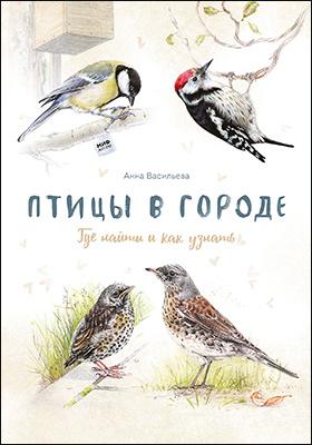 Птицы в городе. Где найти и как узнать: научно-популярное издание
