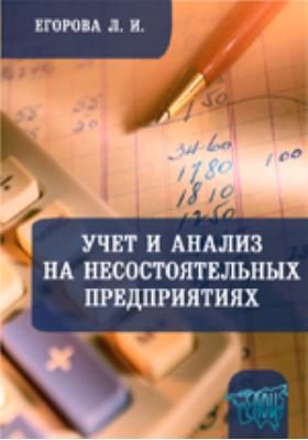 Учет и анализ на несостоятельных предприятиях: учебно-методический комплекс