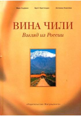 Вина Чили. Взгляд из России