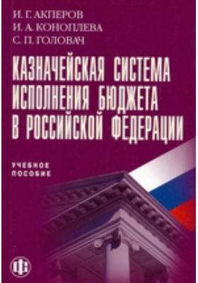 Казначейская система исполнения бюджета в Российской Федерации: учебное пособие