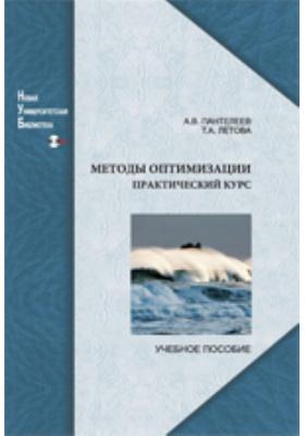Методы оптимизации. Практический курс: учебное пособие