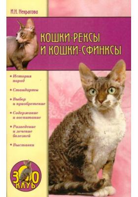 Кошки-рексы и кошки-сфинксы