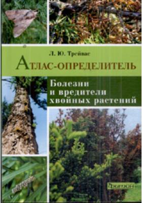 Болезни и вредители хвойных растений : Атлас-определитель