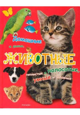 Животные = I Love Animals : Домашние и дикие, пятнистые и полосатые, умные и забавные