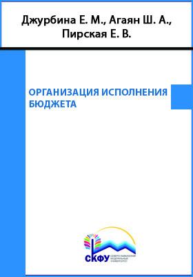 Организация исполнения бюджета: учебное пособие