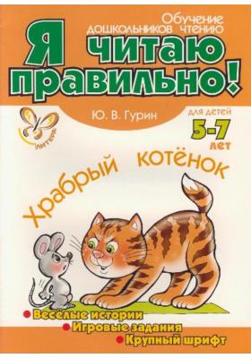 Храбрый котенок