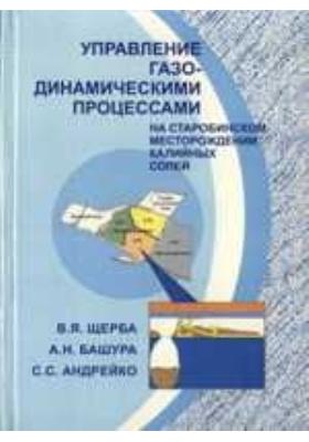 Управление газодинамическими процессами на Старобинском месторождении калийных солей