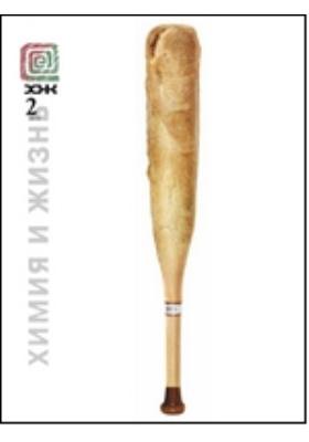 Химия и жизнь - XXI век: ежемесячный научно-популярный журнал. 2010. № 2