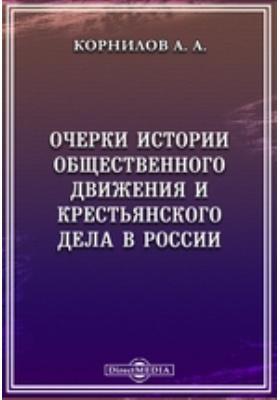 Очерки по истории общественного движения и крестьянского дела в России