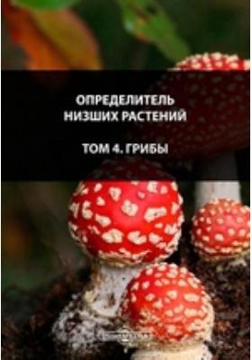 Определитель низших растений. Т. 4. Грибы