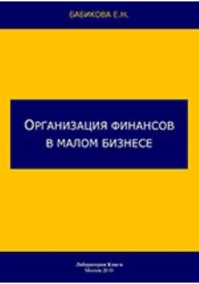 Организация финансов в малом бизнесе