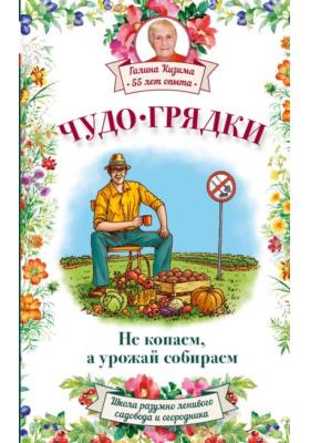 Чудо-грядки: не копаем, а урожай собираем = Огород по-русски: мало сажаем - много собираем = Большой урожай на маленьких грядках: все секреты повышения урожайности