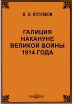 Галиция накануне Великой войны 1914 года