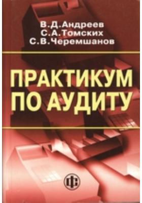 Практикум по аудиту: учебное пособие
