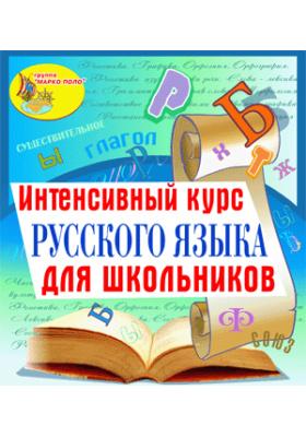 Интенсивный курс русского языка для школьников