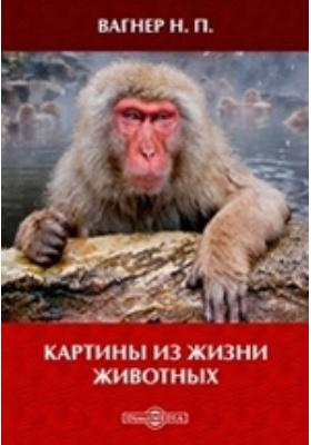 Картины из жизни животных: очерки и рассказы