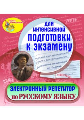 Электронный репетитор по русскому языку