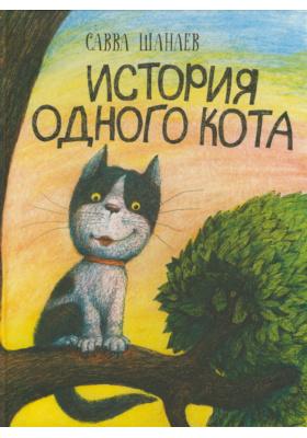 История одного кота : Повесть. Основана на реальных событиях