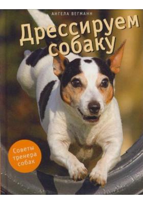 Дрессируем собаку = Hundetricks : Советы тренера собак