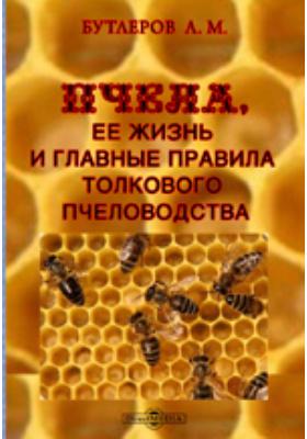 Пчела, ее жизнь и главные правила толкового пчеловодства