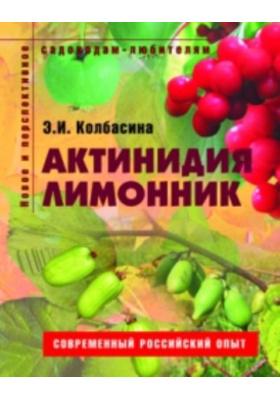 Актинидия, лимонник. Пособие для садоводов-любителей : Современный российский опыт